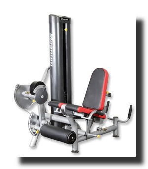 Magnum Fitness System and Free Weights