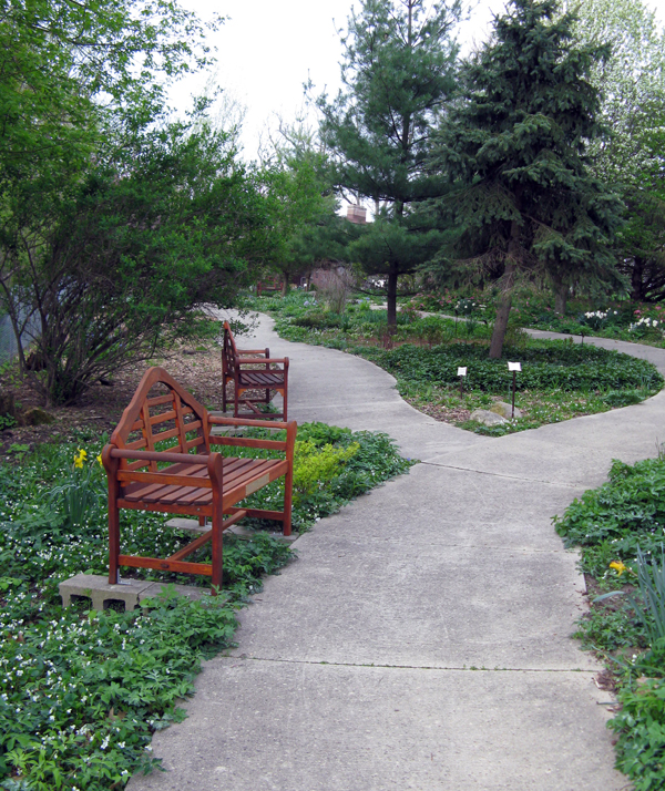 Walkway and bench.jpg