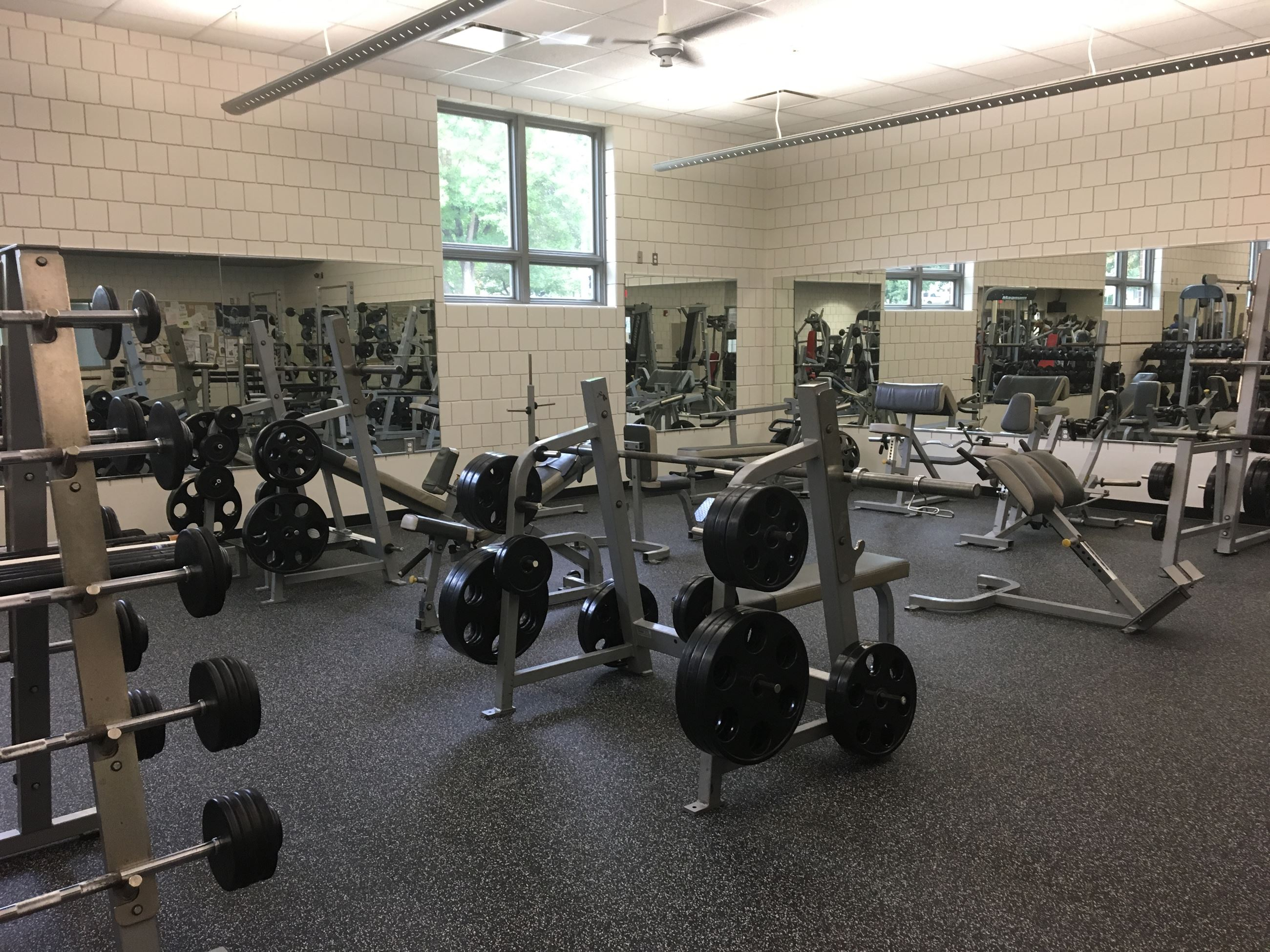 Free Weights 3